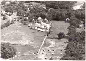This is an aerial photo of my parents' farm from 1945. You can see little chicken shelters in the lower right. the barn in the upper right was destroyed by arson in the mid 60's. It was filled with antique tools when it burned. All that was left was a whetstone and the foundation. The arsonist tried to burn the barn next to the house the following night, but my great grandfather and the fire department were on their toes and managed to save most of the barn.